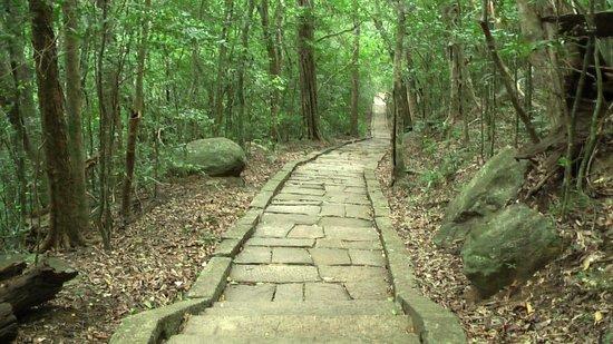 Šri Lanka Granite-trackway