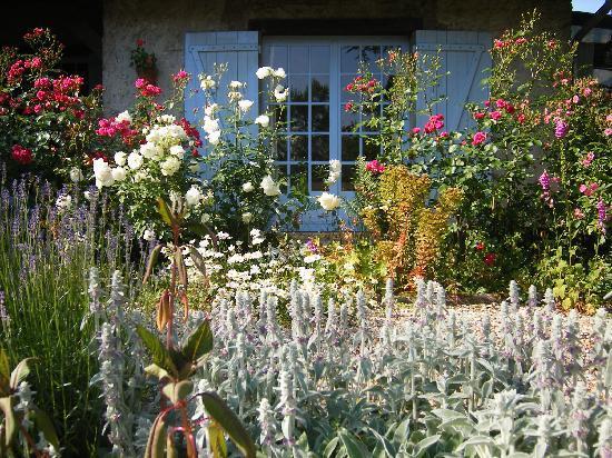 Apothéose... Un-enchantement-floral