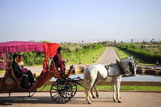 المدن المغربية المحتضنة لكاس العالم للاندية Horse-carriage