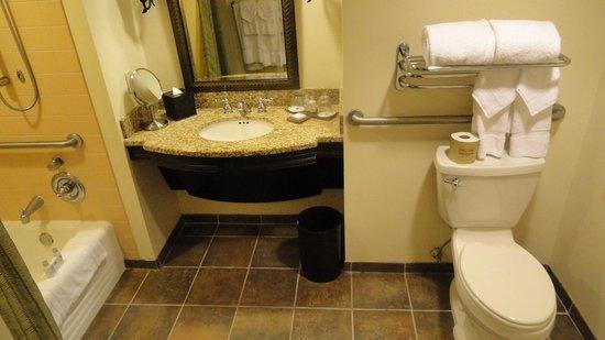 [TR] 3 semaines août 2013 en famille Universal-Disney cruise-WDW-Discovery Cove-Bush Garden-Seaworld Bathroom