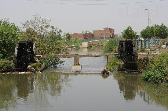 صور من مدينة الفيوم Waterwheels-in-al-faiyum