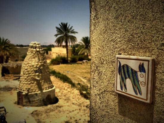 صور من مدينة الفيوم Zad-el-mosafer-ecolodge