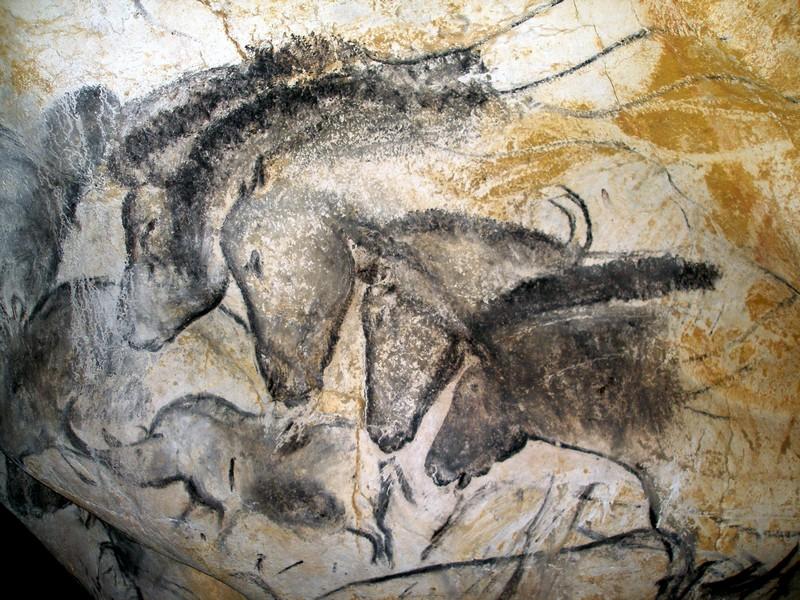 zebre ou pas ce n est peut être pas la question Actu-42B-1-Grotte-Chauvet-Le-panneau-des-chevaux