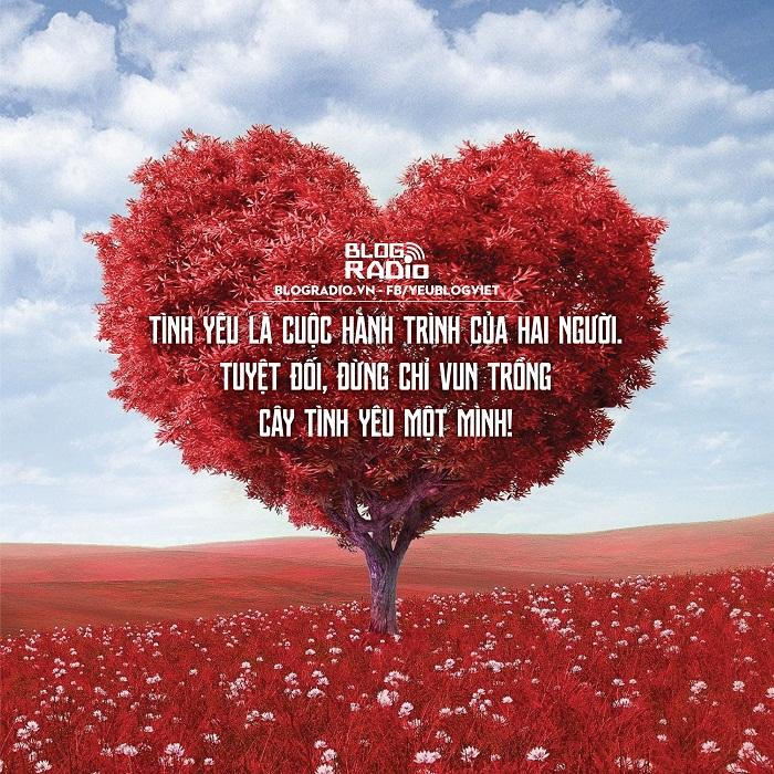 Vì cuộc sống có nhiều lựa chọn... Quote4