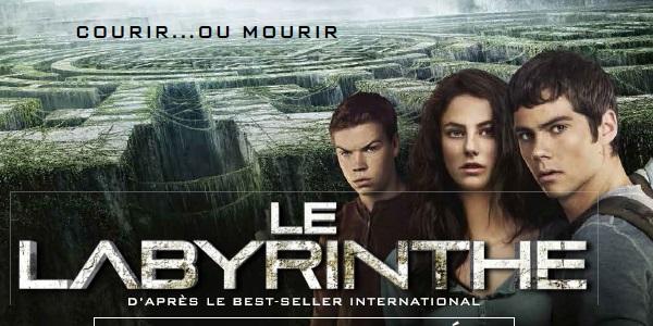 Parlez de cinéma! (Partie 1) - Page 40 7774366553_le-labyrinthe
