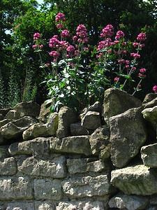 Meilleures guidouneries 2016 Valeriane-mur