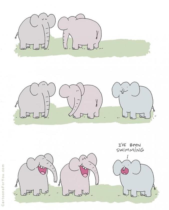 Humour, blagues, infos décalées (Gorafi etc...), photos et vidéos délire ! - Page 17 01