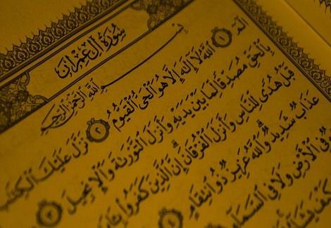 فضائل سور القرآن الكريم 2014_3_25_17_5_20_955