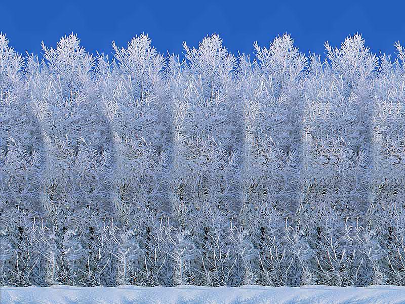 Иллюзии - Страница 5 Snowmen800