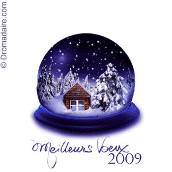 Meilleurs voeux en images Meilleurs-voeux-2009-L-1