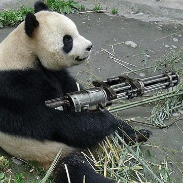 Présentation + panda Market-place-google-vas-niquer-avec-panda-L-WwkPmq