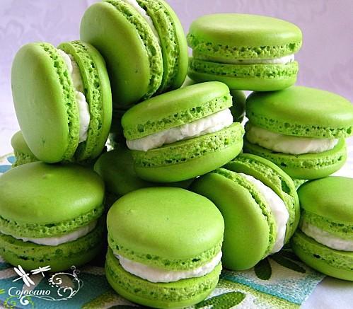 Avatars Couleur Verte Macarons-citron-vert-basilic-mascarpone-L-WLJ2SJ