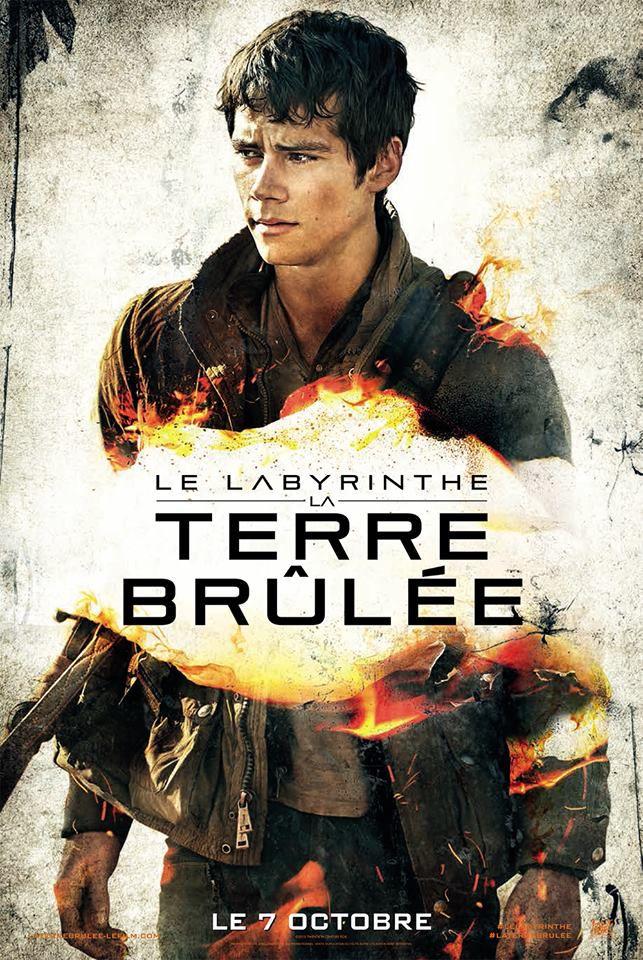 MARABOUT DES FILMS DE CINEMA  - Page 3 Le_Labyrinthe_La_Terre_brulee