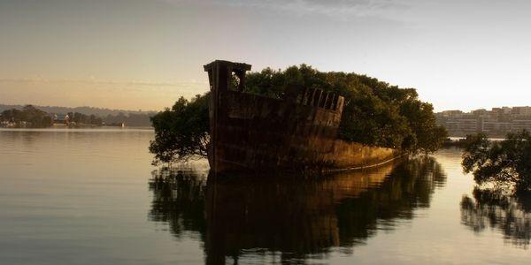Top 25 des plus belles photos d'épaves de bateaux à travers le monde Abandonn%C3%A9-le-navire-Homebush-Bay-Australie_resultat