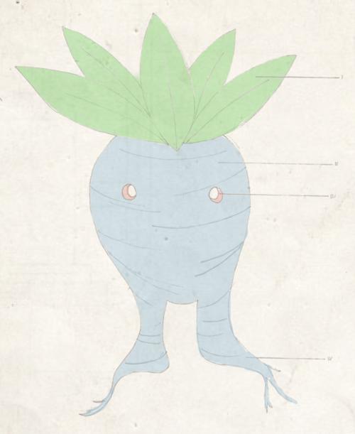 Dr. Mortimer Phene - In search of legendary pokemon Kyogre Tumblr_inline_ngiph0yVlR1siplpa