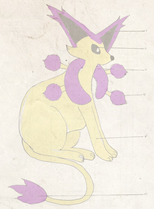 Dr. Mortimer Phene - In search of legendary pokemon Kyogre Tumblr_inline_ngb6c6o68Q1siplpa