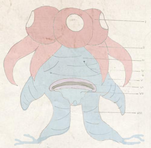 Dr. Mortimer Phene - In search of legendary pokemon Kyogre Tumblr_inline_ngippvRXPO1siplpa