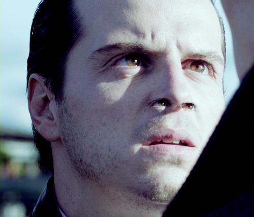 Sherlock - BBC [2] - Page 5 Tumblr_inline_milqnzbwfi1qz4rgp