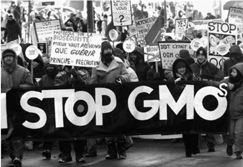 Genetically Modified Organisms (GMO) Tumblr_lmjfs0MVBb1qak0n6