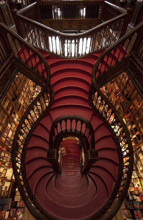 Najlepše biblioteke na svetu Tumblr_md39p3ys1s1r82d4k
