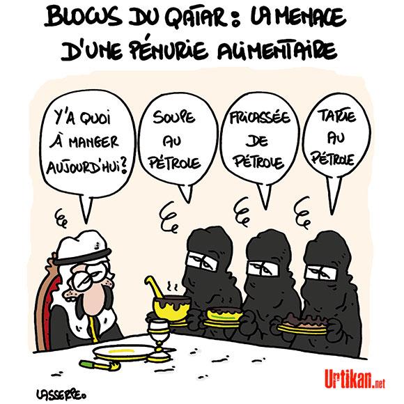 Le dessin du jour (humour en images) - Page 7 170708-qatar-blocus-lasserpe