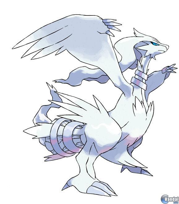 Pokémon 20105317288_2