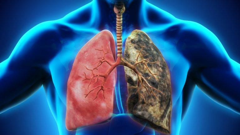 Ultimos Avances en Ciencia y Salud - Página 12 0014839600