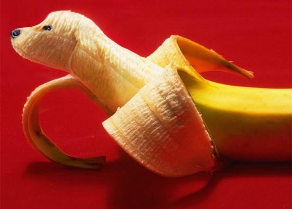 பழங்களில் அழகிய விலங்கு உருவங்கள்  Banana-doggy