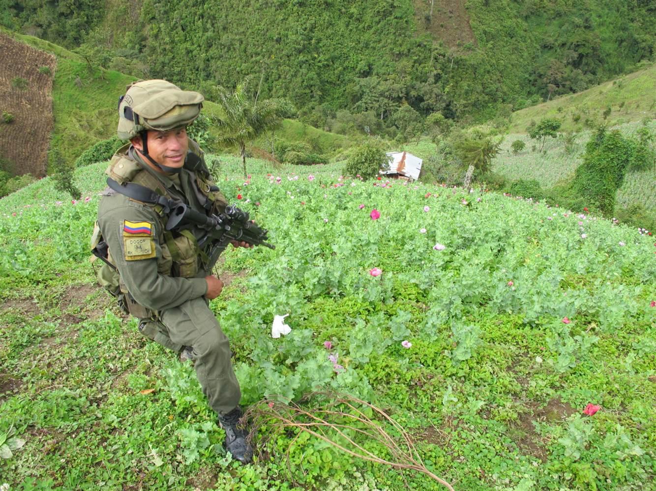 Colombia - Página 20 141118-columbia-heroin-police-arp-1007a_3026376a74c45d46481b41dc2c547c23.nbcnews-ux-2880-1000