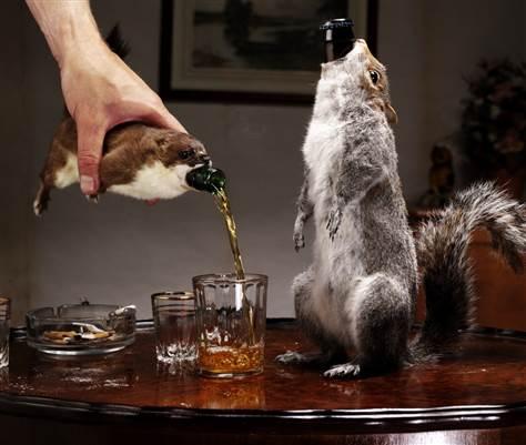 Couper une bouteille en verre 100723-brewdog-beer-hmed-140a.grid-6x2