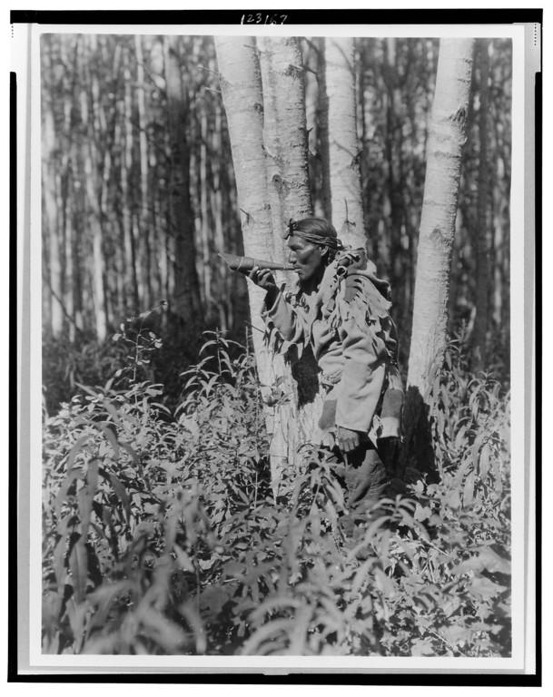 L'élan et les pratiques de chasse  Curtis091-XL