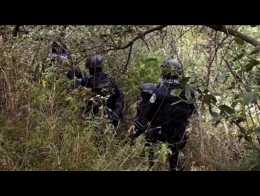 Detiene PF a Alfredo Beltrán Guzmán, 'El Mochomito'  8qmfxq-X