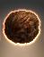 Les Tribules  Tribble_dotson