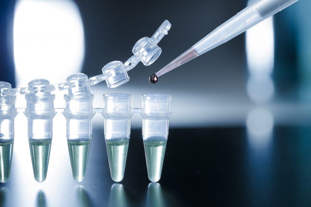Ứng dụng tế bào gốc trong nuôi cấy thận, mở ra tiềm năng phát triển y học 779c4a098fed4ddd9721a24b8072a070