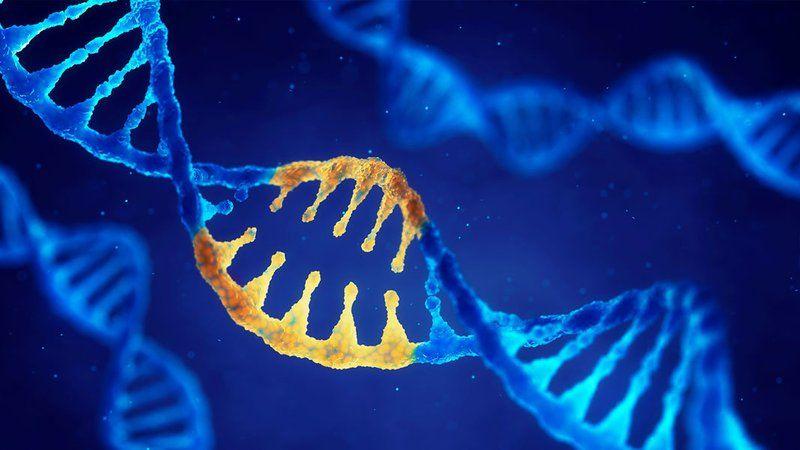 Sức khỏe, đời sống: Phát hiện thêm 18 biến thể gen làm tăng nguy cơ tự kỷ Daffed346e29c5654f54133d1fc65ccb