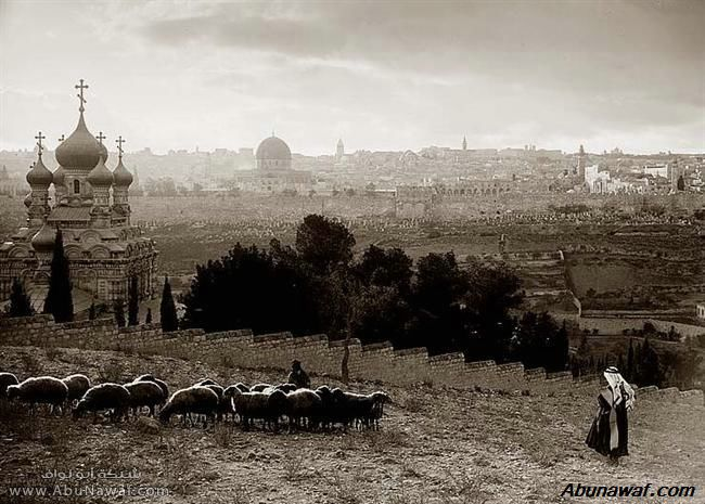 صور قديمة Gethsemane-foreground-002