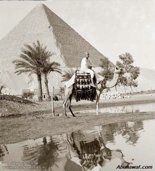 صور قديمة Pyramid-Great-001