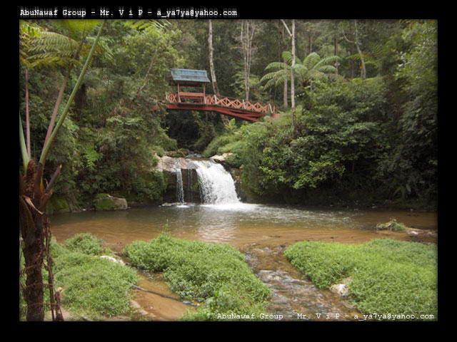 جميع المناظر الطبيعية Malaysia_11