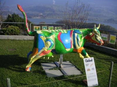 VACAS DE EXPOSICION EN MADRID 20080410103600-vacas-locas