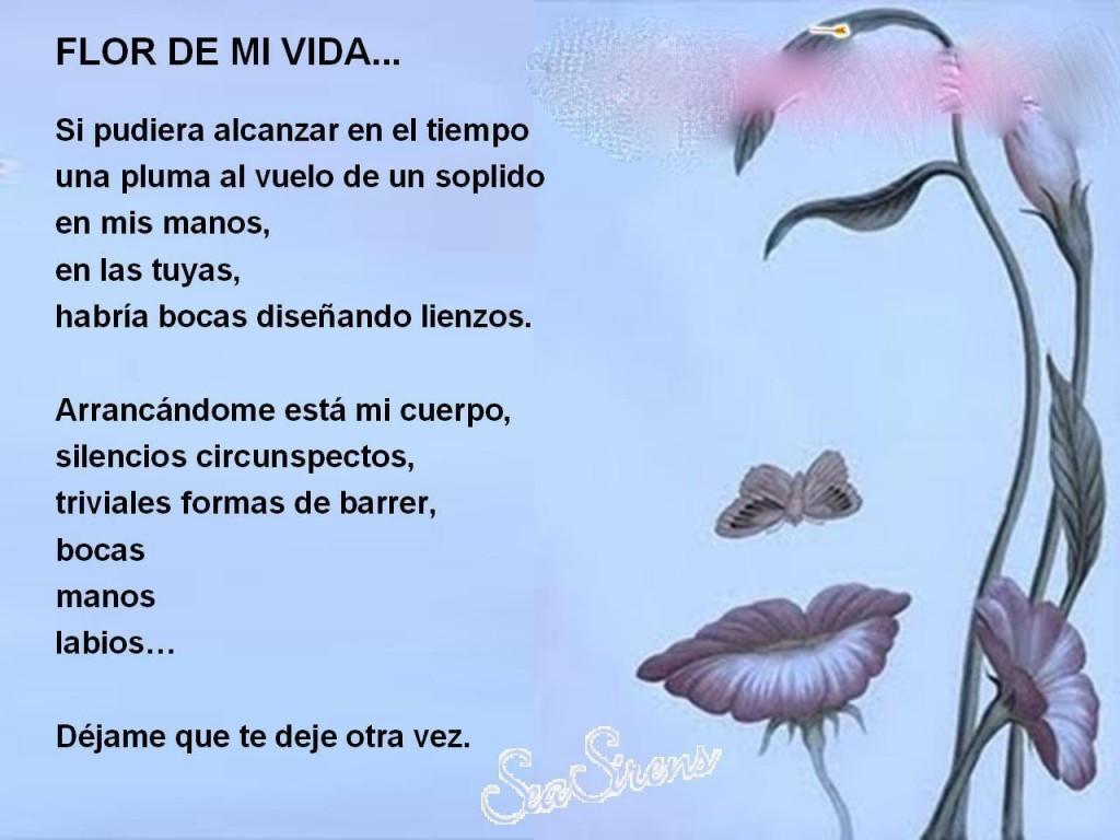 Poemas con imagenes Poemas-de-amor-para-facebook-1024x768