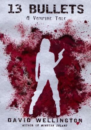 Vampire Story (série) - David Wellington 200812-13bullets