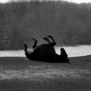 Indique um FILME. / Último filme que vc viu - Página 19 Andrei-rublev