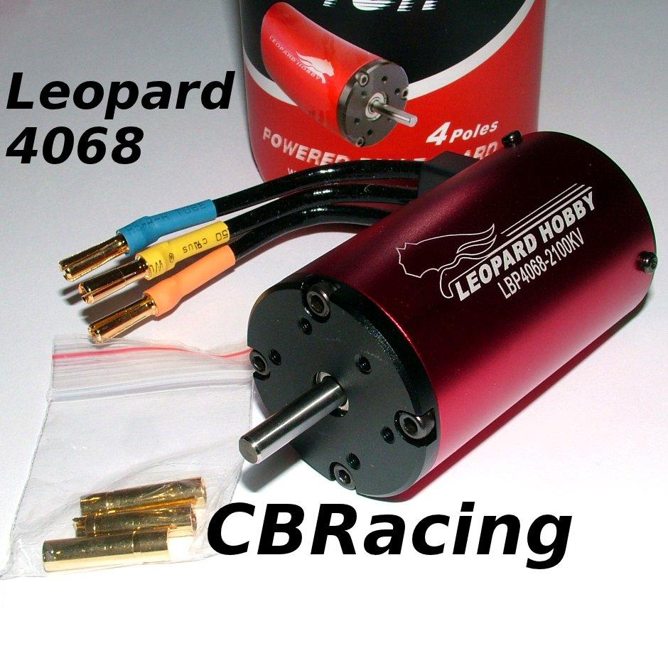 L'heure du choix (KV moteur) 4S Leopard_4068_red