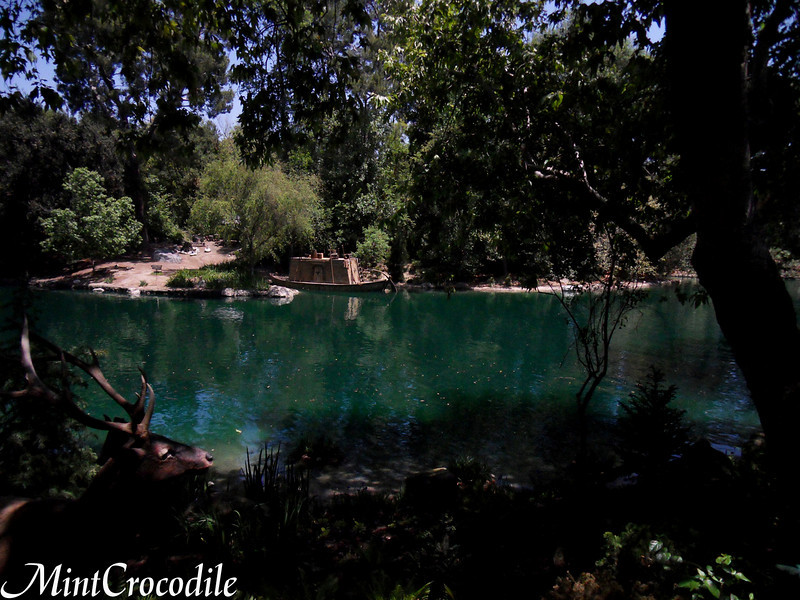 [Disneyland Park] Rivers of America en travaux 859089981_SUnft-L
