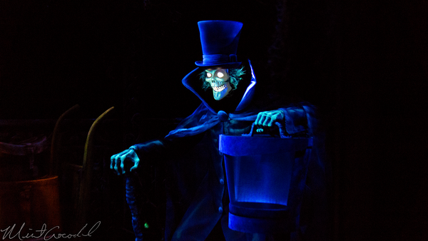 [Disneyland Park & Magic Kingdom] The Haunted Mansion - Page 3 I-kHLFCFL-M