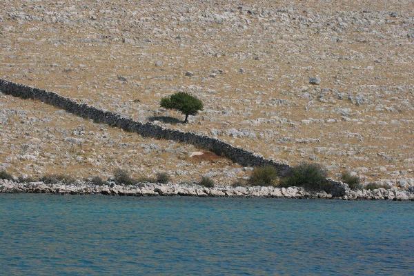 Hrvatska - Page 8 Ostrvski-pejzaz-na-Kornatima-Island-landscape-of-Kornati