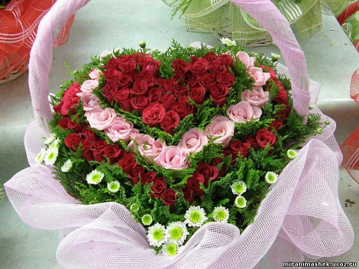 Поздравляем Леночку(Ведьмо4ка) с днем рождения!!! 426164870