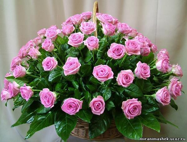 Поздравляем Елену(nonona) с днем рождения!!!!! 650409308