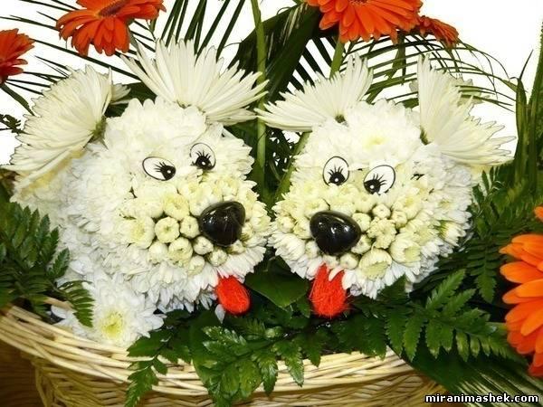 Поздравляем Олечку(panda) с годовщиной свадьбы! 933086897