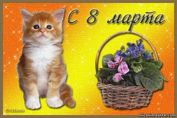 Поздравляем Всех с Международным Женским Днем 8 Марта!!! 956096205